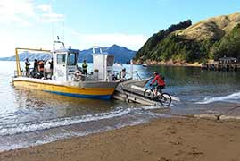 Take the barge and mountain bike around d'Urville Island
